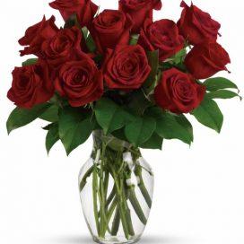 Red Rose Vase (TEV12-7A)
