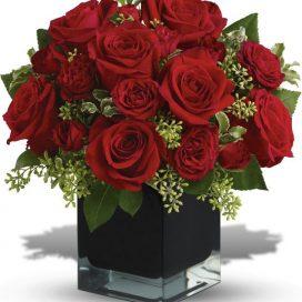 Ravishing Reds (TW10-596)