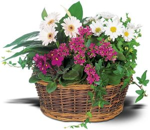 European Garden Basket (TW10-127)