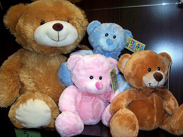 Plush Teddy (PT01-10)