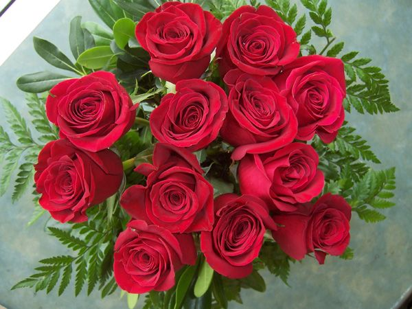 12 Red Roses (RS12-10)