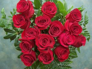 15 Red Roses (RS15-10)