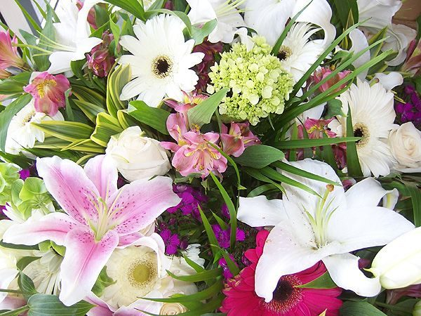 Cut Flower Bouquet - extra large (CF050-10)
