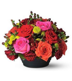 Rose Glory (TF38-2)