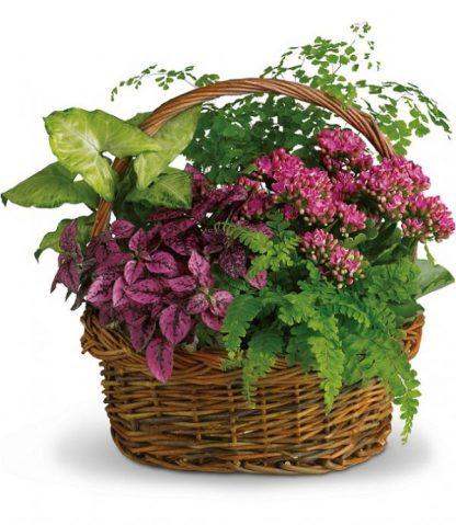 Secret Garden Basket (T96-2A)