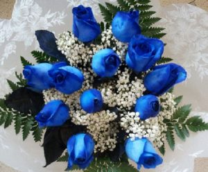12 Blue Roses (RSB12-13)