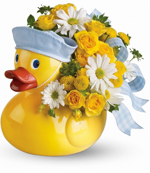 Ducky Delight- Boy (T34-3A Boy)