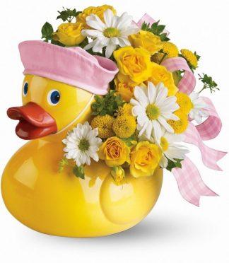 Duckie Delight- Girl (T34-3Agirl)