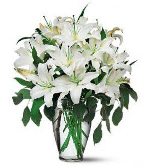 Wonderful White Lilies (TF24-1)