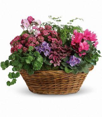 European Garden Basket (T97-1A)