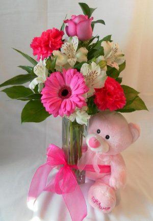 Pink Cuddles (FA13-02)