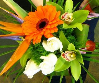 Tropical Celebration Bouquet (WED13-11)