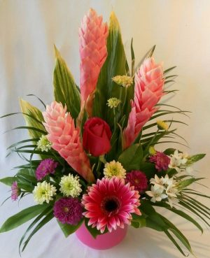 Tropical Daydream-pink (FA14-02)