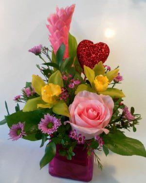 Valentine Ginger Hug (VD15-01)