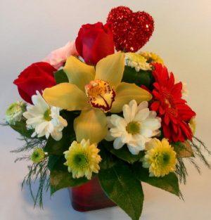 Valentine Orchid Hug (VD16-01)
