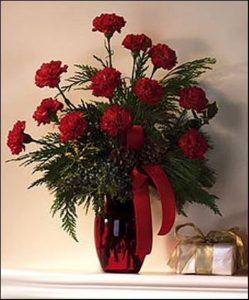 Holiday Carnations (T71-4)