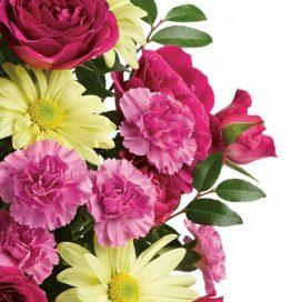 Designer's Choice Cut Flower Bouquet – (CF30-19). VASE NOT INCLUDED.