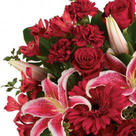 Designer's Choice Cut Flower Bouquet-Jumbo (CF60-19). VASE NOT INCLUDED.