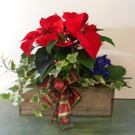 Winter Window Box (XM19-04)